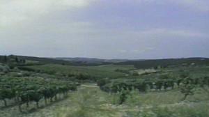 Tuscany04.1a